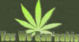 Listen  Yes We Cannabis  live